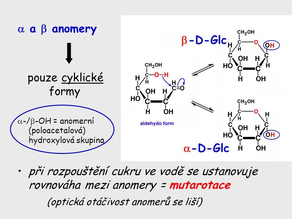 (optická otáčivost anomerů se liší) -D-Glc