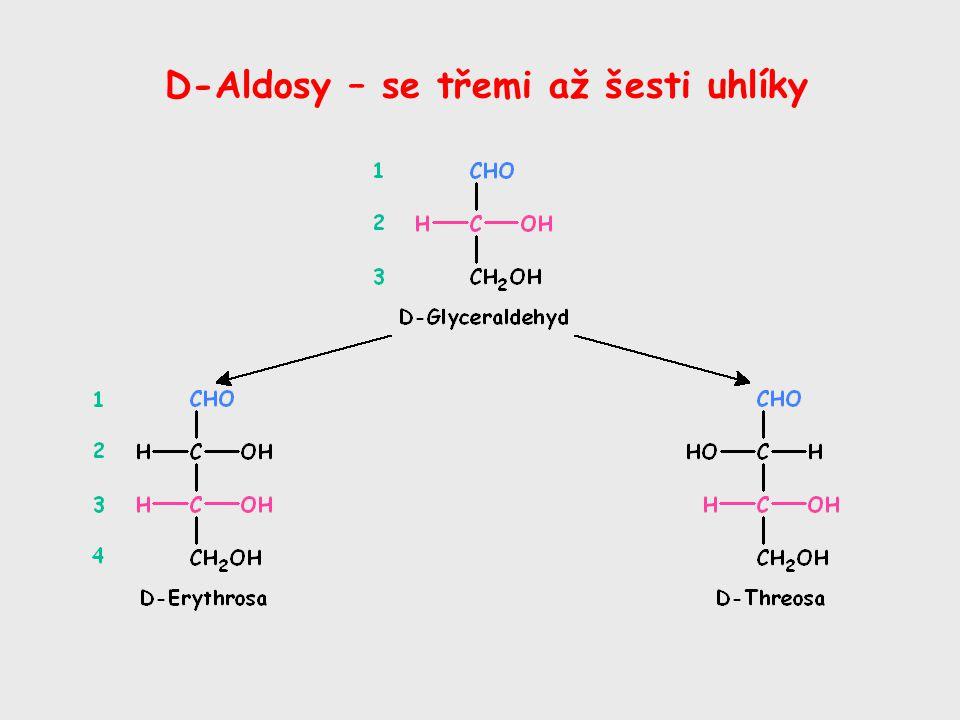 D-Aldosy – se třemi až šesti uhlíky