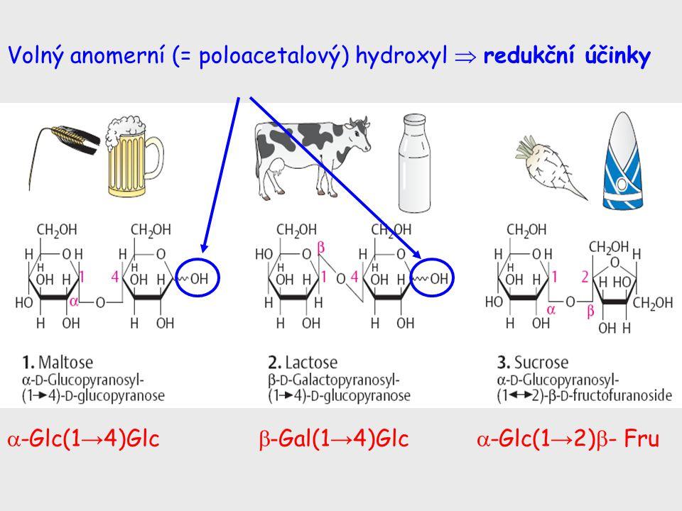 Volný anomerní (= poloacetalový) hydroxyl  redukční účinky