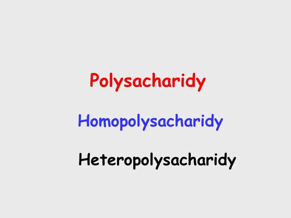 Polysacharidy Homopolysacharidy Heteropolysacharidy