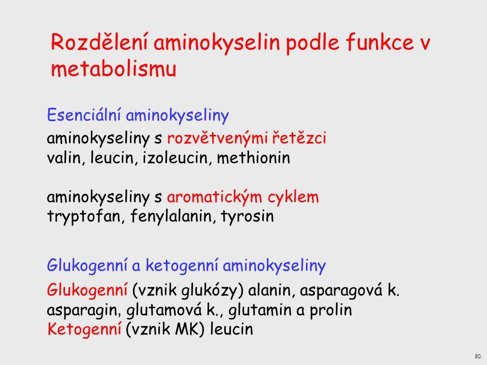 Rozdělení aminokyselin podle funkce v metabolismu