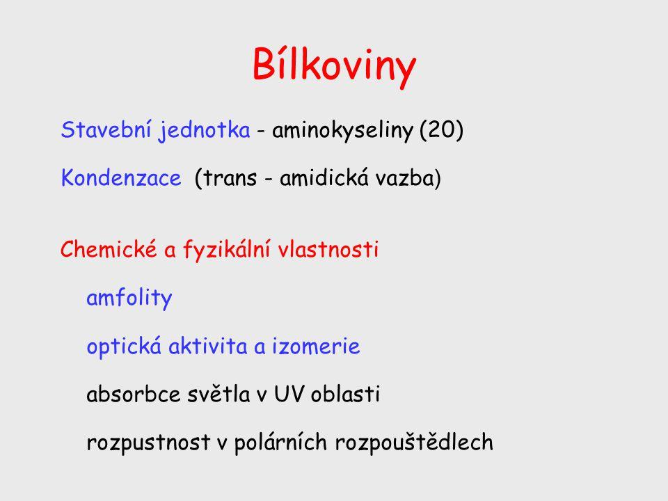 Bílkoviny Stavební jednotka - aminokyseliny (20)