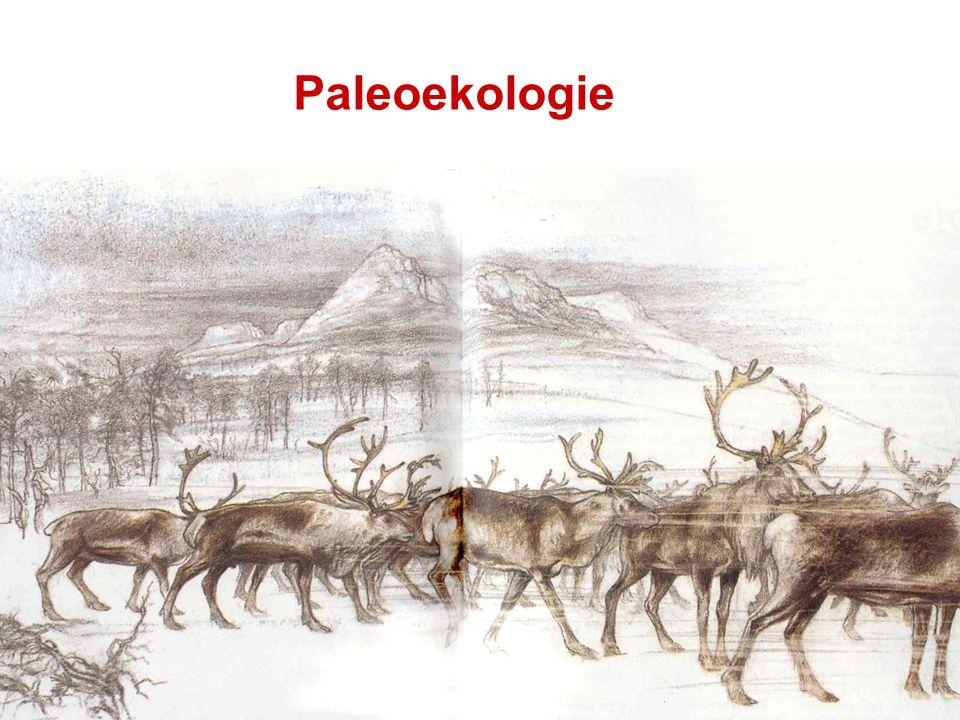 Paleoekologie