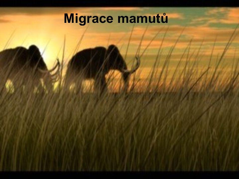 Migrace mamutů