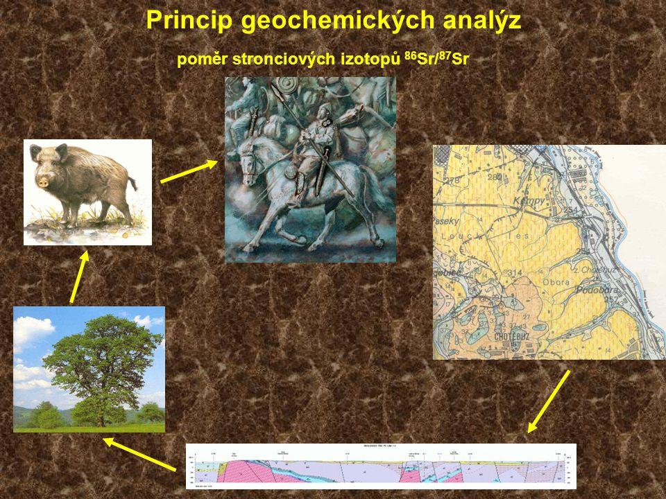 Princip geochemických analýz