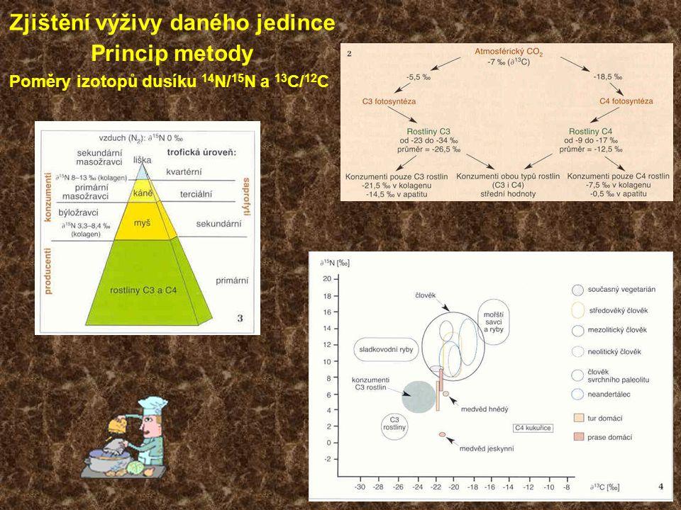 Zjištění výživy daného jedince Princip metody