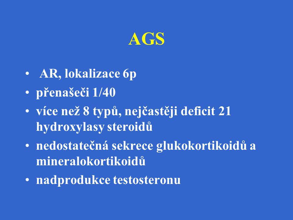 AGS AR, lokalizace 6p přenašeči 1/40