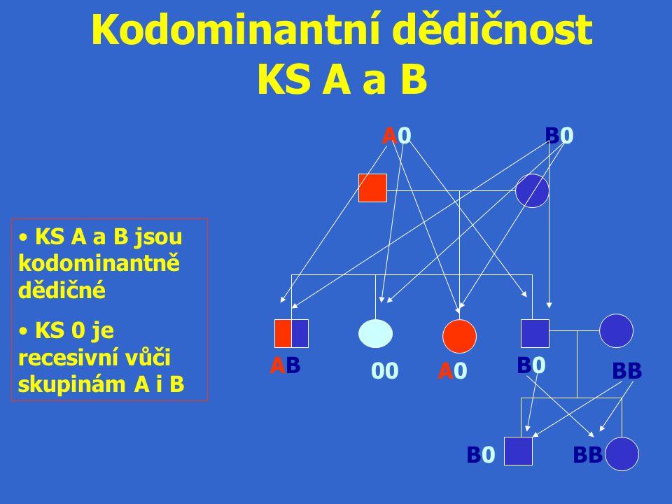 Kodominantní dědičnost KS A a B