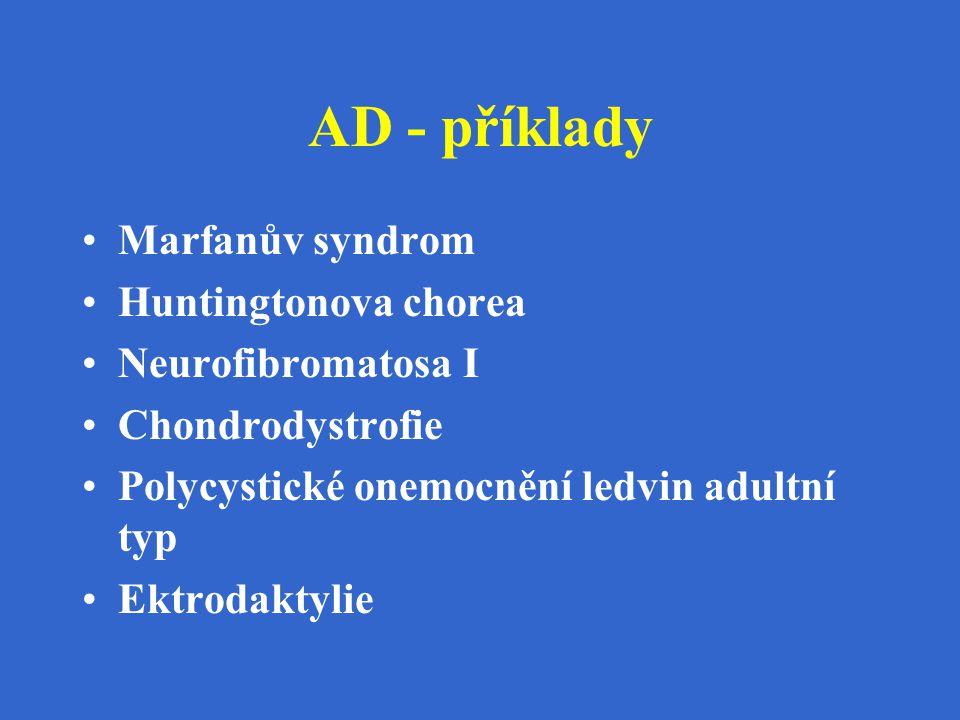 AD - příklady Marfanův syndrom Huntingtonova chorea Neurofibromatosa I