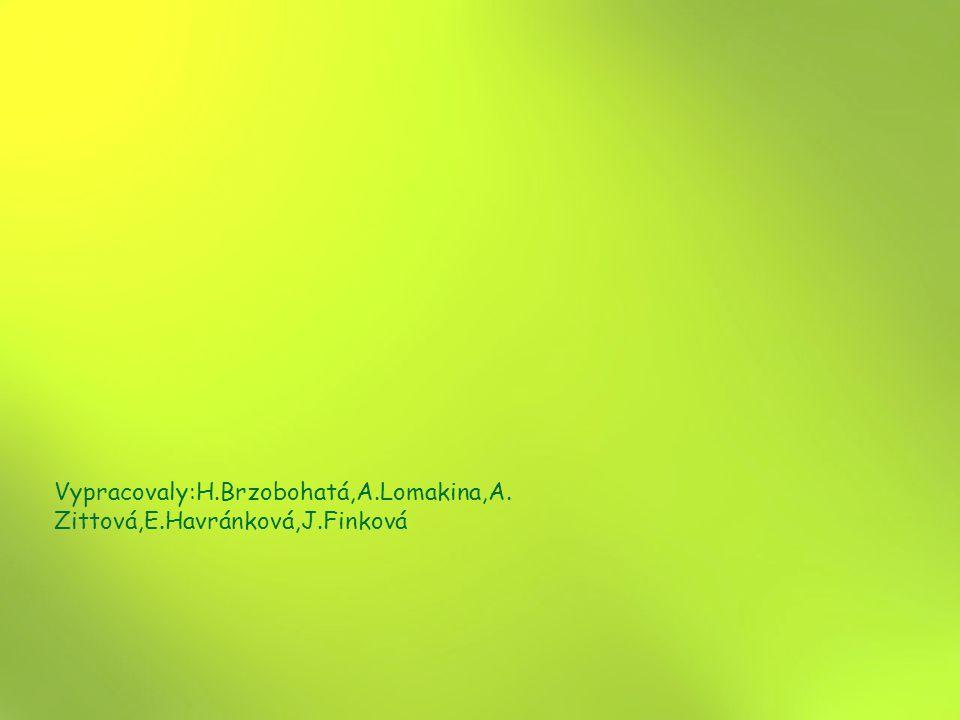 Vypracovaly:H.Brzobohatá,A.Lomakina,A.Zittová,E.Havránková,J.Finková