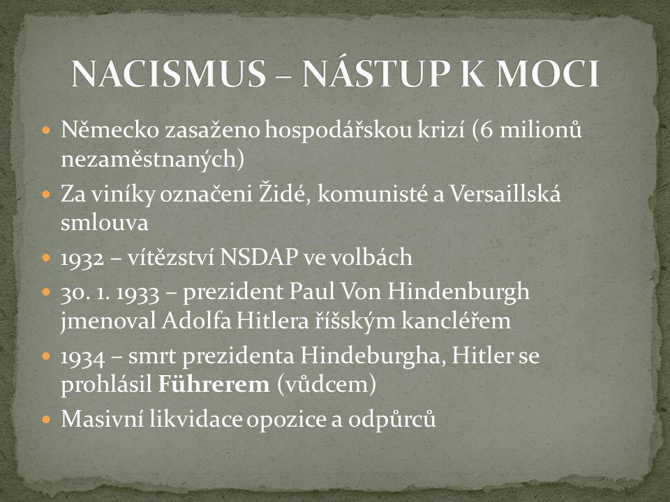 NACISMUS – NÁSTUP K MOCI