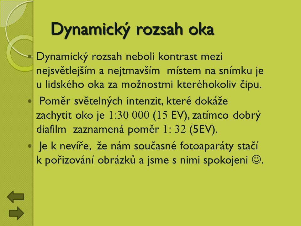 Dynamický rozsah oka