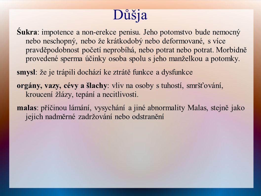 Důšja