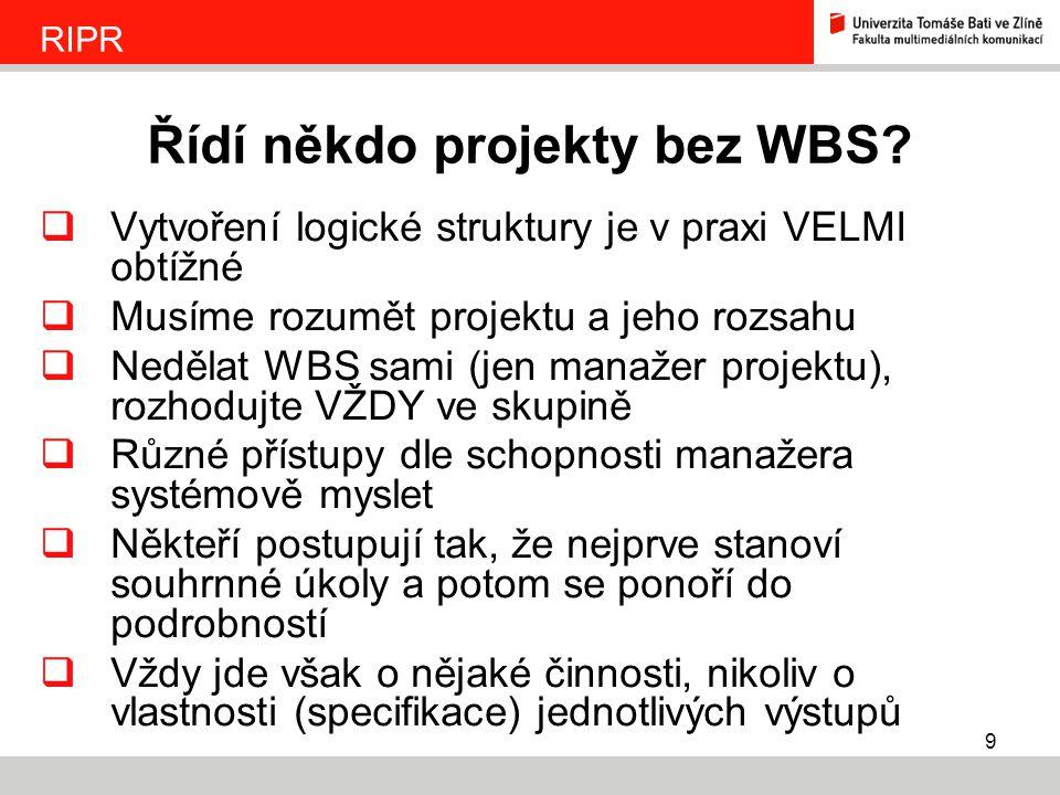 Řídí někdo projekty bez WBS