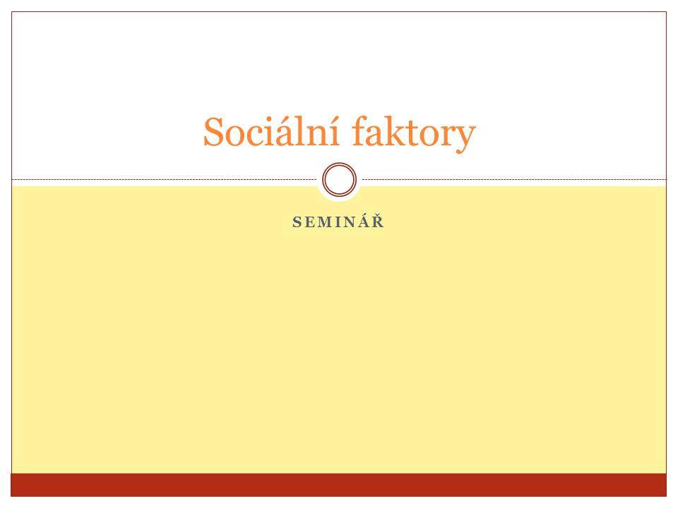 Sociální faktory seminář