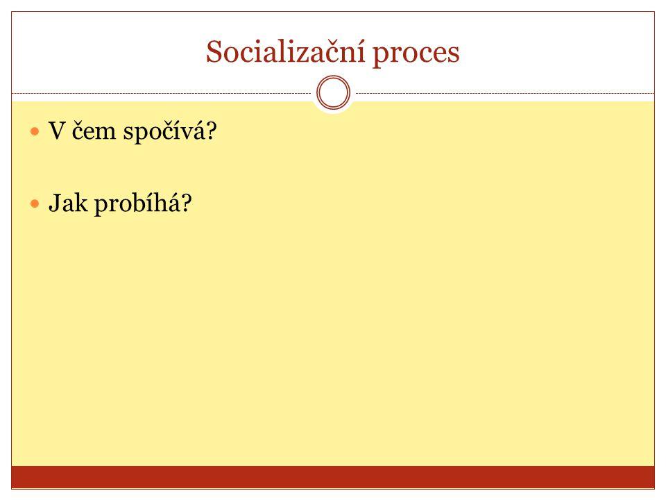Socializační proces V čem spočívá Jak probíhá