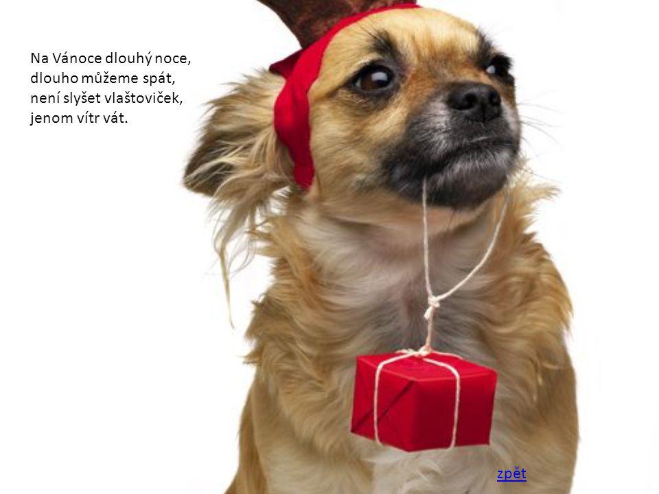 Na Vánoce dlouhý noce, dlouho můžeme spát, není slyšet vlaštoviček, jenom vítr vát. zpět