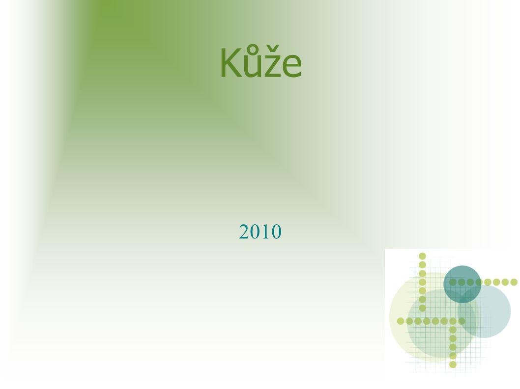 Kůže 2010