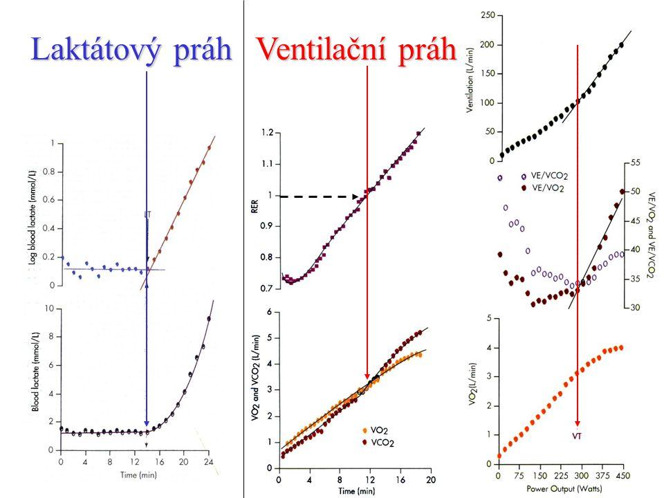 Laktátový práh Ventilační práh