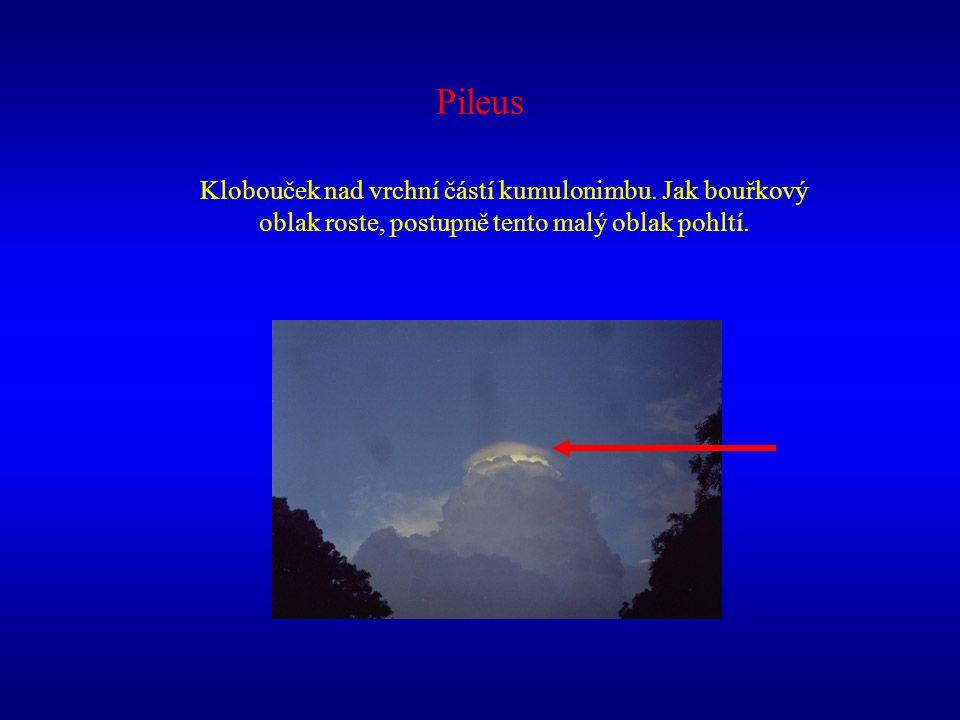 Pileus Klobouček nad vrchní částí kumulonimbu.