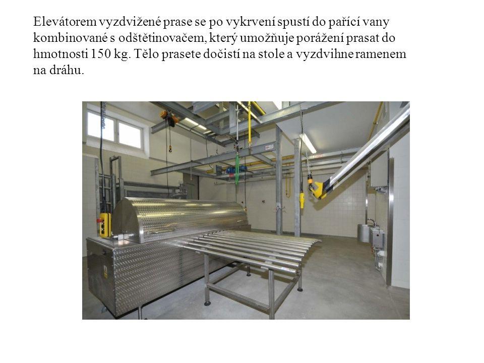 Elevátorem vyzdvižené prase se po vykrvení spustí do pařící vany kombinované s odštětinovačem, který umožňuje porážení prasat do hmotnosti 150 kg.