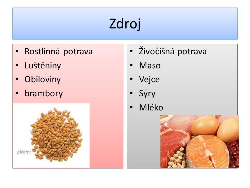 Zdroj Rostlinná potrava Luštěniny Obiloviny brambory Živočišná potrava