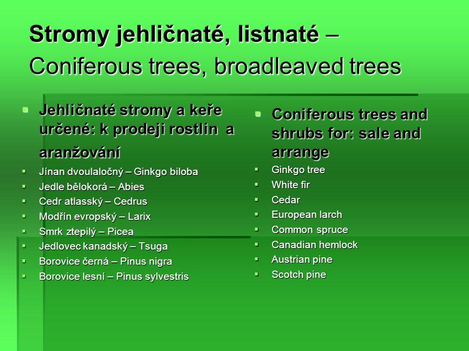 Stromy jehličnaté, listnaté – Coniferous trees, broadleaved trees