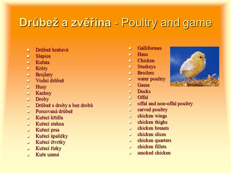 Drůbež a zvěřina - Poultry and game