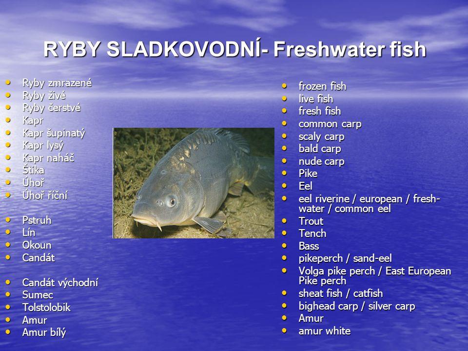 RYBY SLADKOVODNÍ- Freshwater fish