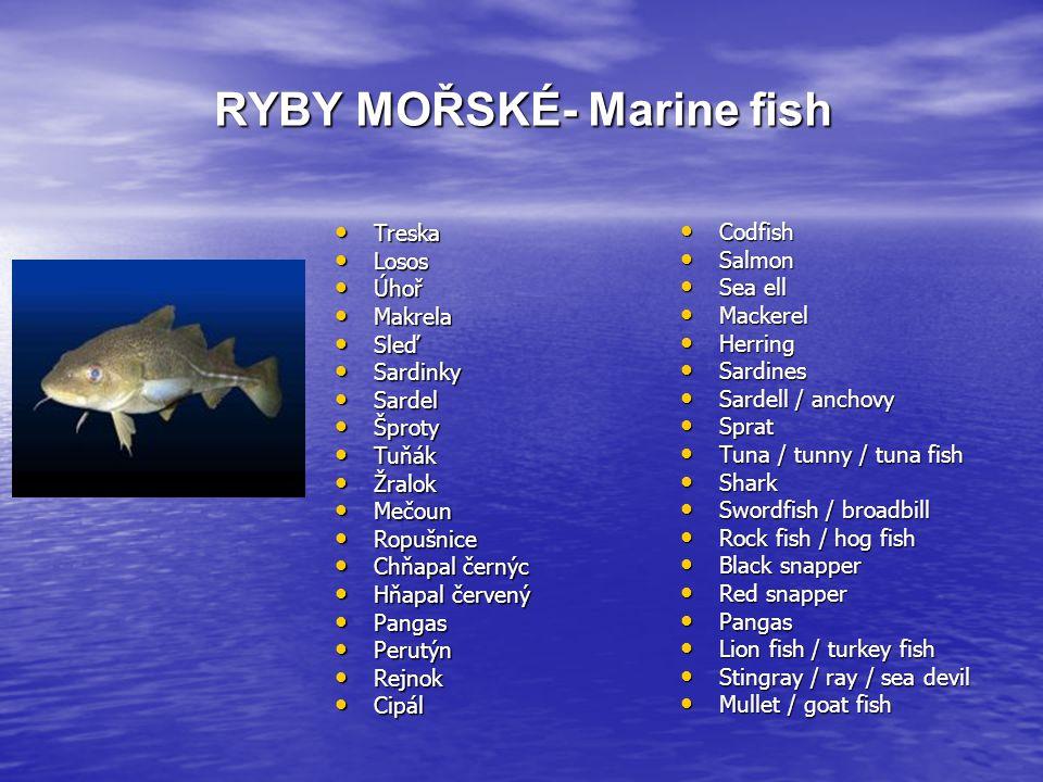 RYBY MOŘSKÉ- Marine fish