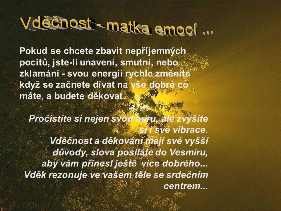 Vděčnost - matka emocí ...