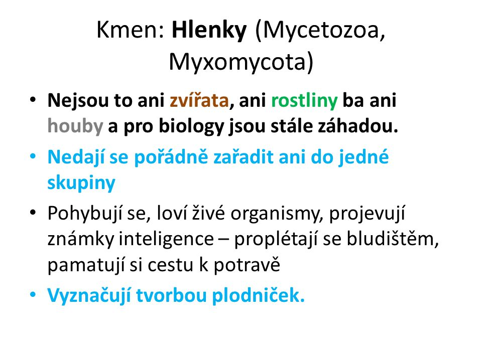 Kmen: Hlenky (Mycetozoa, Myxomycota)
