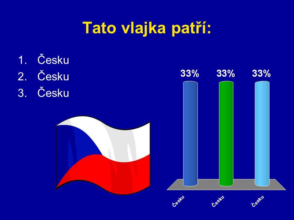 Tato vlajka patří: Česku