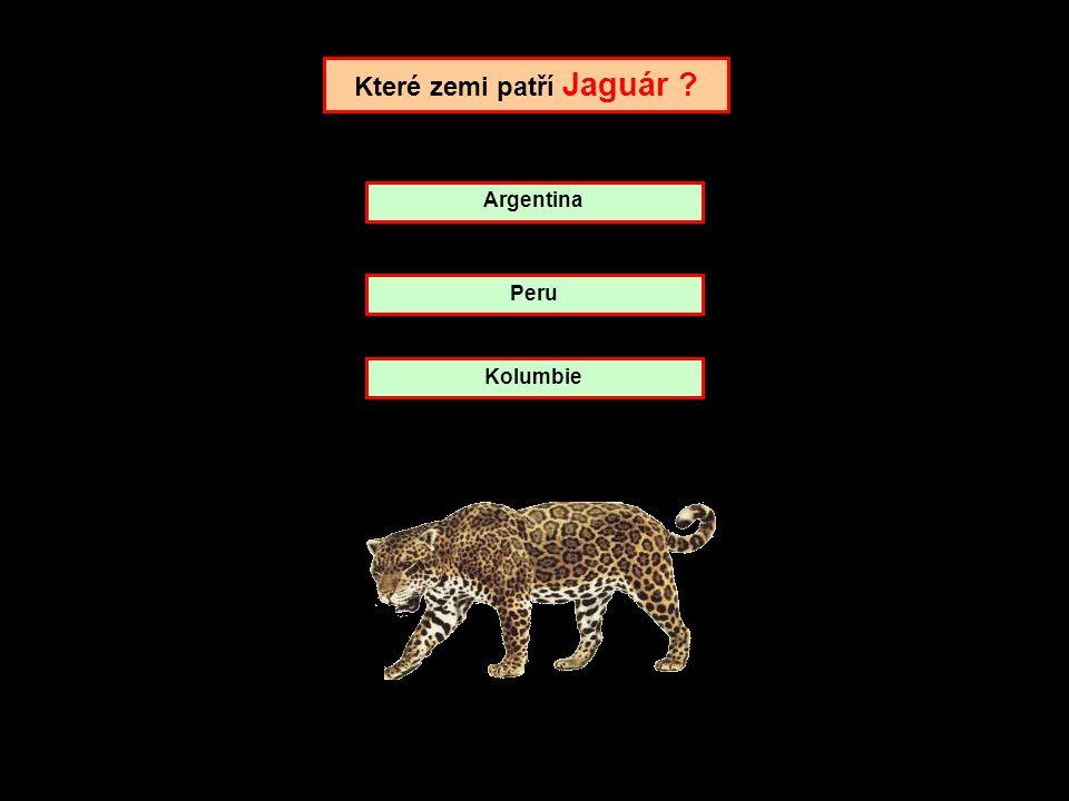 Které zemi patří Jaguár