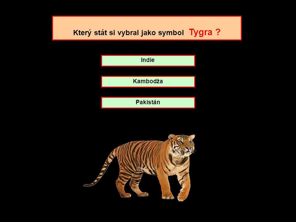 Který stát si vybral jako symbol Tygra
