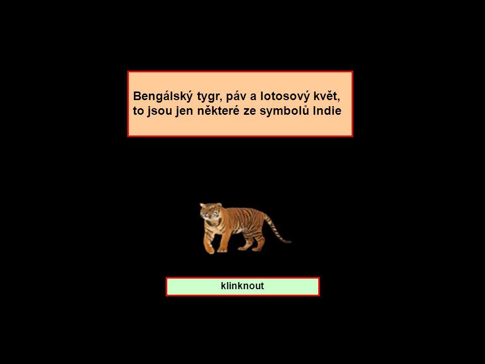 Bengálský tygr, páv a lotosový květ, to jsou jen některé ze symbolů Indie