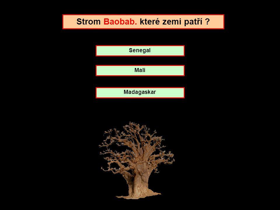 Strom Baobab. které zemi patří