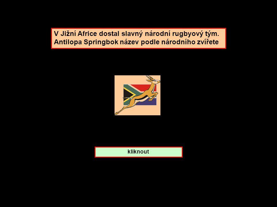 V Jižní Africe dostal slavný národní rugbyový tým