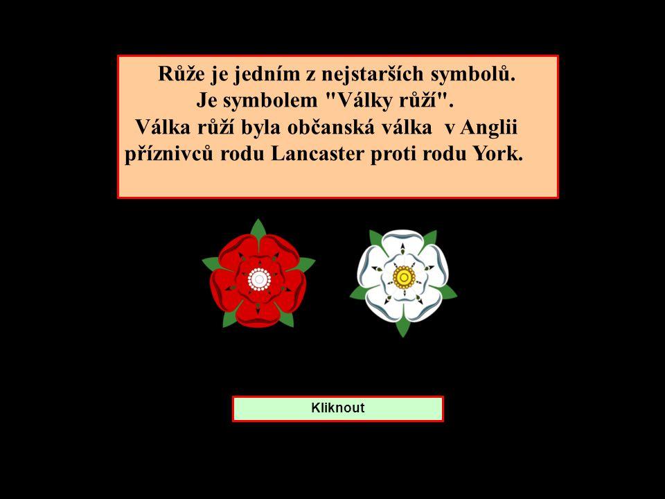Růže je jedním z nejstarších symbolů. Je symbolem Války růží .