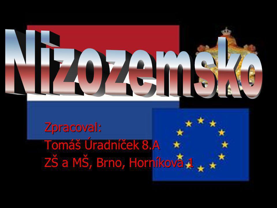 Zpracoval: Tomáš Úradníček 8.A ZŠ a MŠ, Brno, Horníkova 1