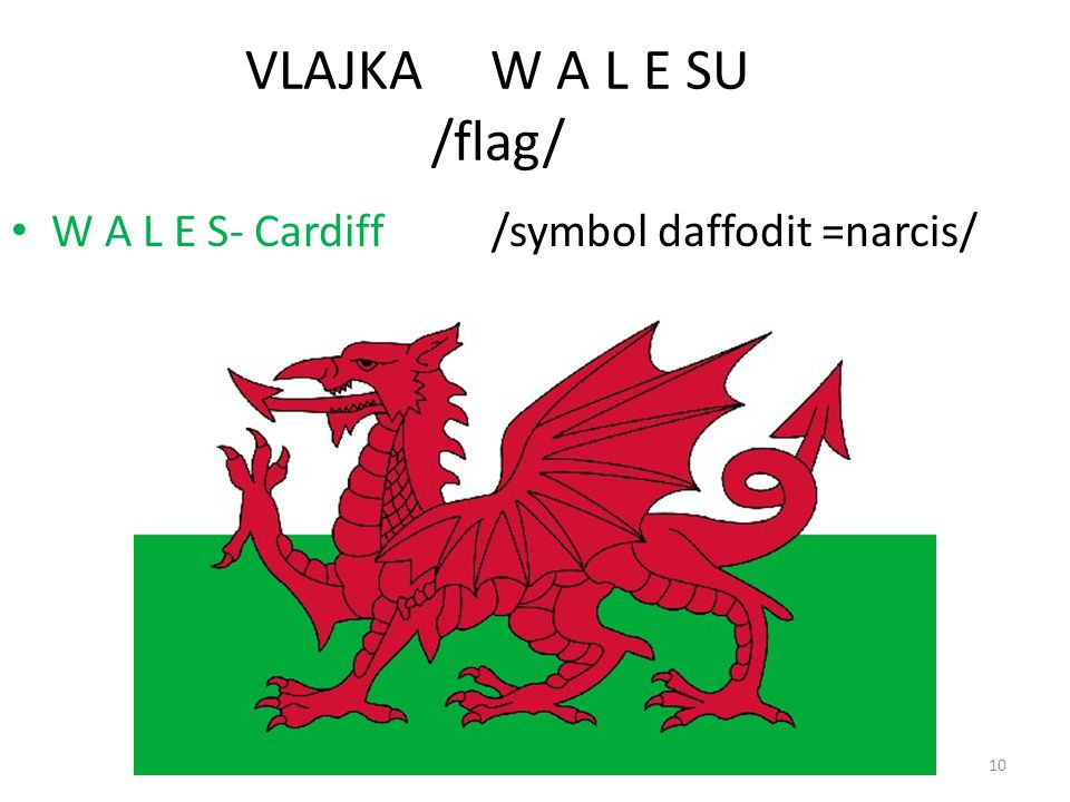 VLAJKA W A L E SU /flag/ W A L E S- Cardiff /symbol daffodit =narcis/