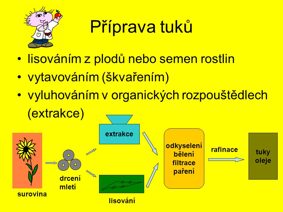 Příprava tuků lisováním z plodů nebo semen rostlin