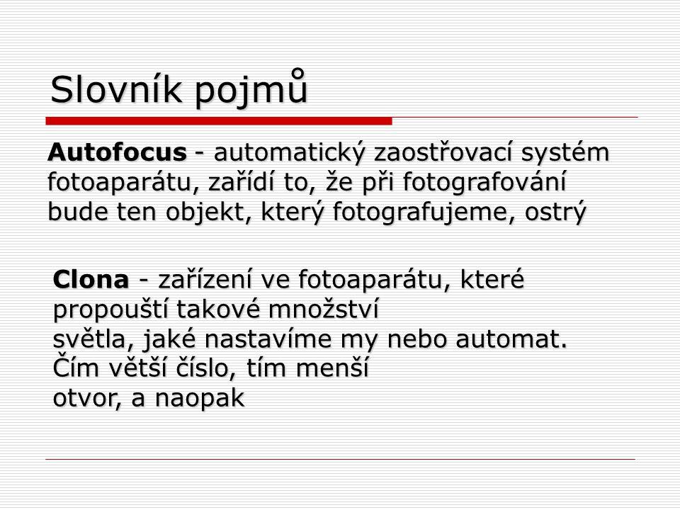 Slovník pojmů Autofocus - automatický zaostřovací systém fotoaparátu, zařídí to, že při fotografování bude ten objekt, který fotografujeme, ostrý.