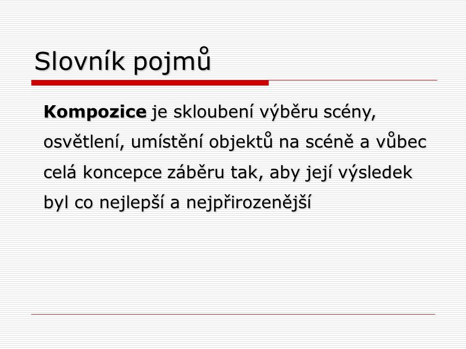 Slovník pojmů
