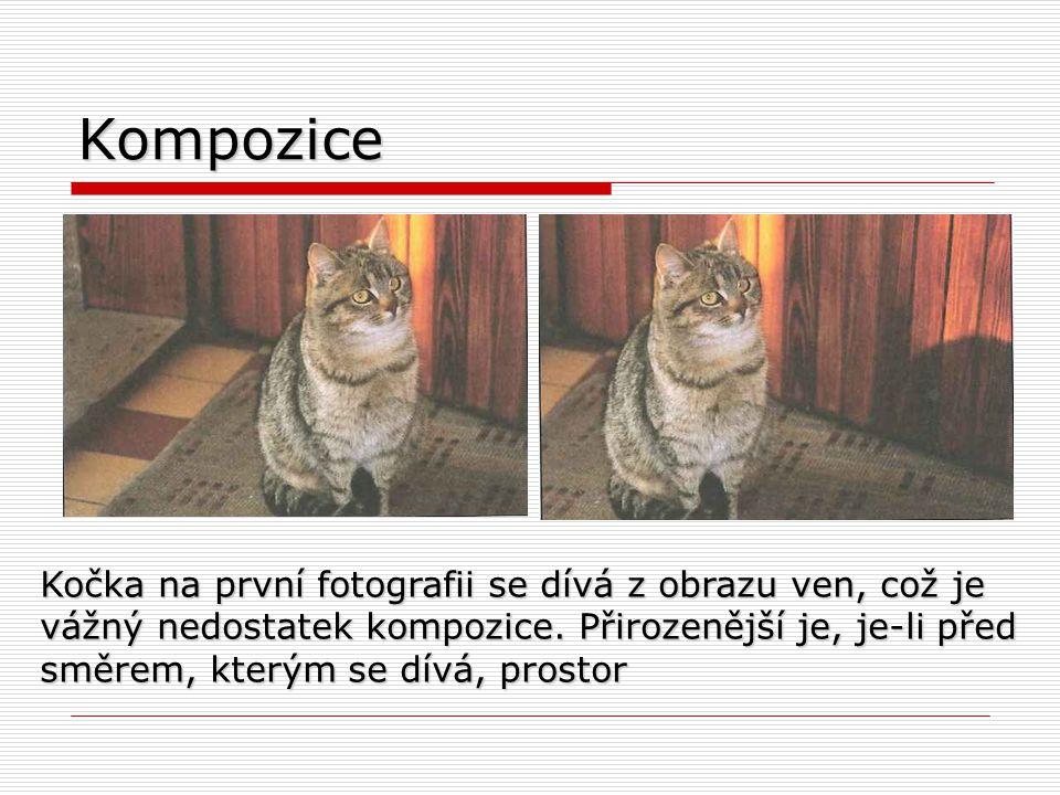 Kompozice Kočka na první fotografii se dívá z obrazu ven, což je vážný nedostatek kompozice. Přirozenější je, je-li před.