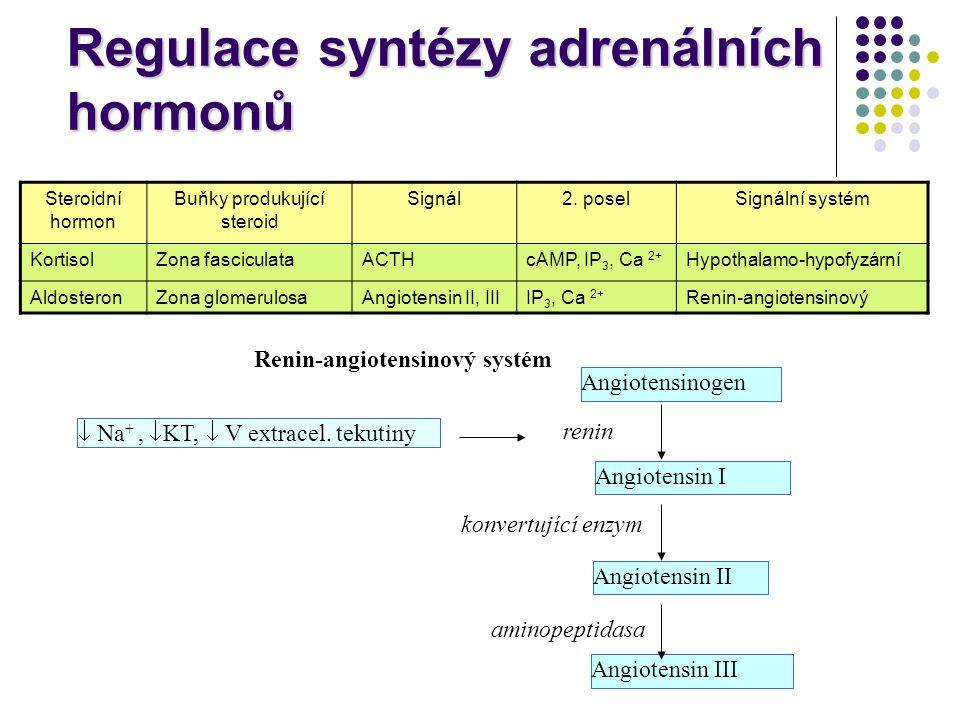 Regulace syntézy adrenálních hormonů