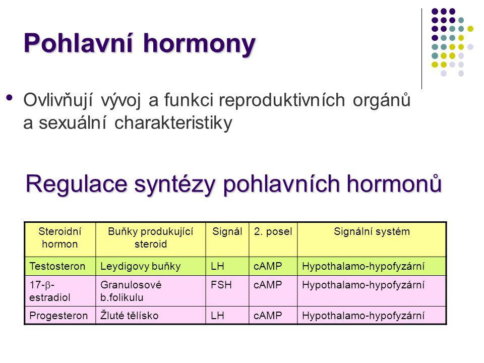 Pohlavní hormony Regulace syntézy pohlavních hormonů