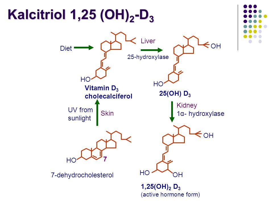 Kalcitriol 1,25 (OH)2-D3 Liver OH Diet HO Vitamin D3 cholecalciferol