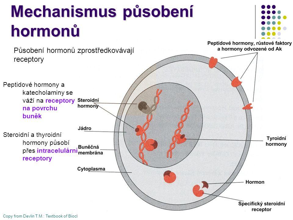 Mechanismus působení hormonů