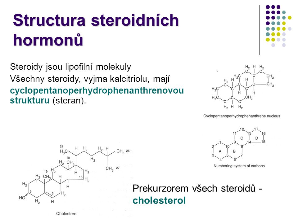 Structura steroidních hormonů